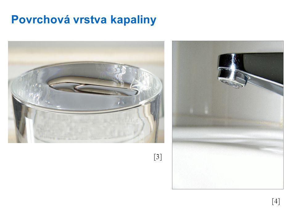 Povrchová vrstva kapaliny [3] [4]