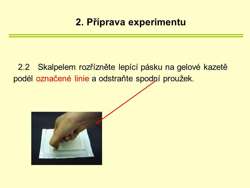 2.2 Skalpelem rozřízněte lepící pásku na gelové kazetě podél označené linie a odstraňte spodní proužek.