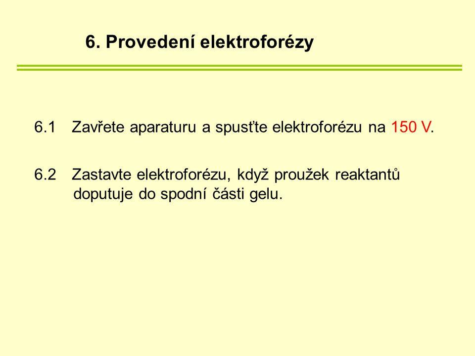 6.1Zavřete aparaturu a spusťte elektroforézu na 150 V.