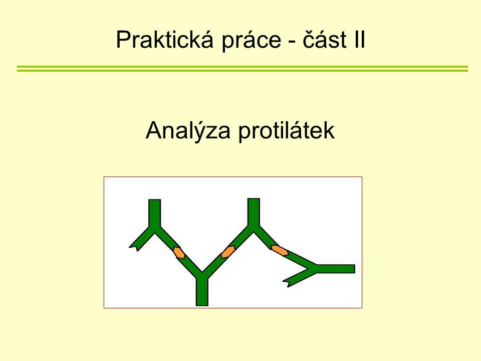 Analýza protilátek Praktická práce - část II
