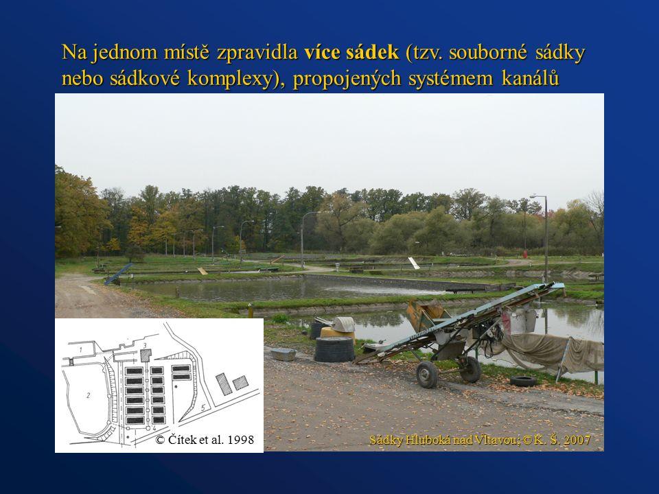 Na jednom místě zpravidla více sádek (tzv. souborné sádky nebo sádkové komplexy), propojených systémem kanálů Sádky Hluboká nad Vltavou; © K. Š. 2007