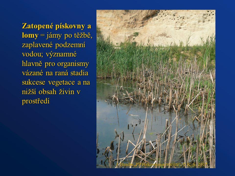 Zatopené pískovny a lomy = jámy po těžbě, zaplavené podzemní vodou; významné hlavně pro organismy vázané na raná stadia sukcese vegetace a na nižší obsah živin v prostředí J.