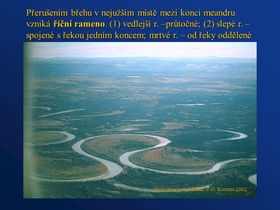Přerušením břehu v nejužším místě mezi konci meandru vzniká říční rameno. (1) vedlejší r. –průtočné; (2) slepé r. – spojené s řekou jedním koncem; mrt