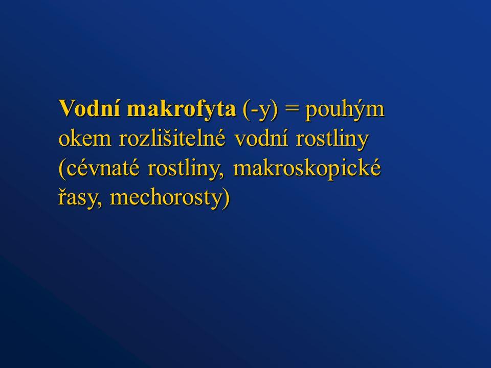 Vodní makrofyta (-y) = pouhým okem rozlišitelné vodní rostliny (cévnaté rostliny, makroskopické řasy, mechorosty)