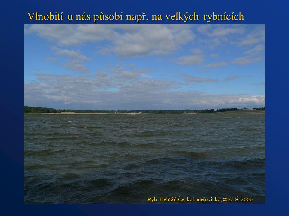 Vlnobití u nás působí např. na velkých rybnících Ryb. Dehtář, Českobudějovicko; © K. Š. 2006