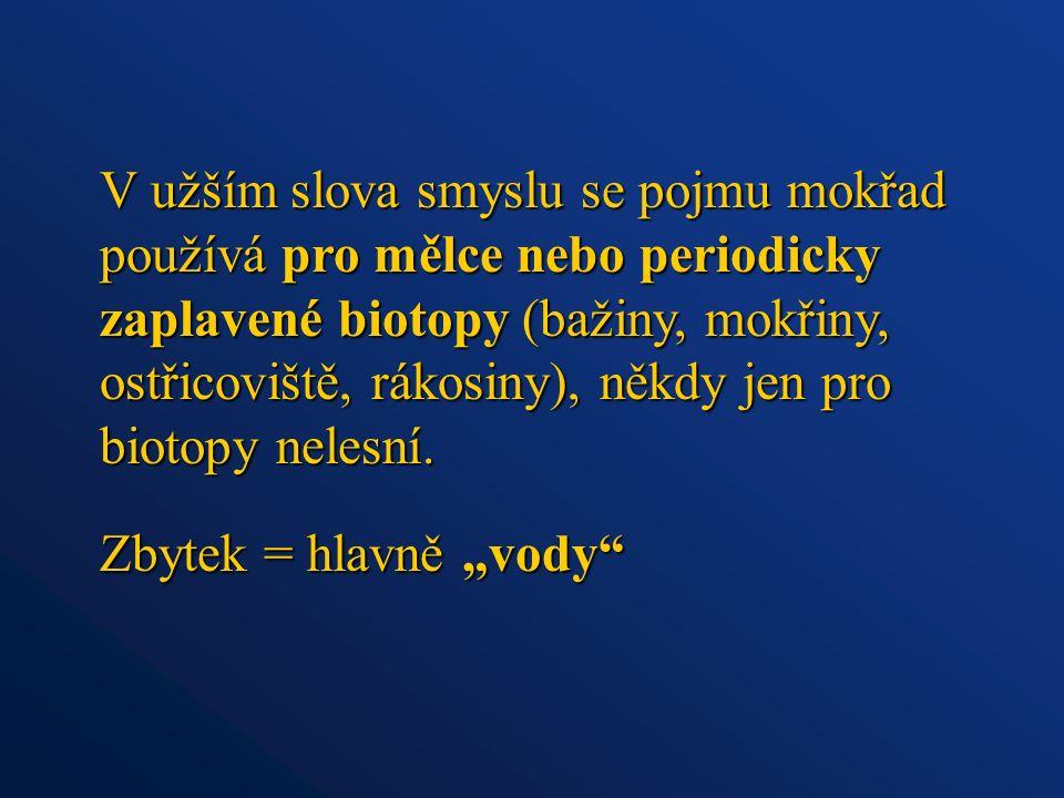 © Archiv SCHKO Pálava Aluviální tůň