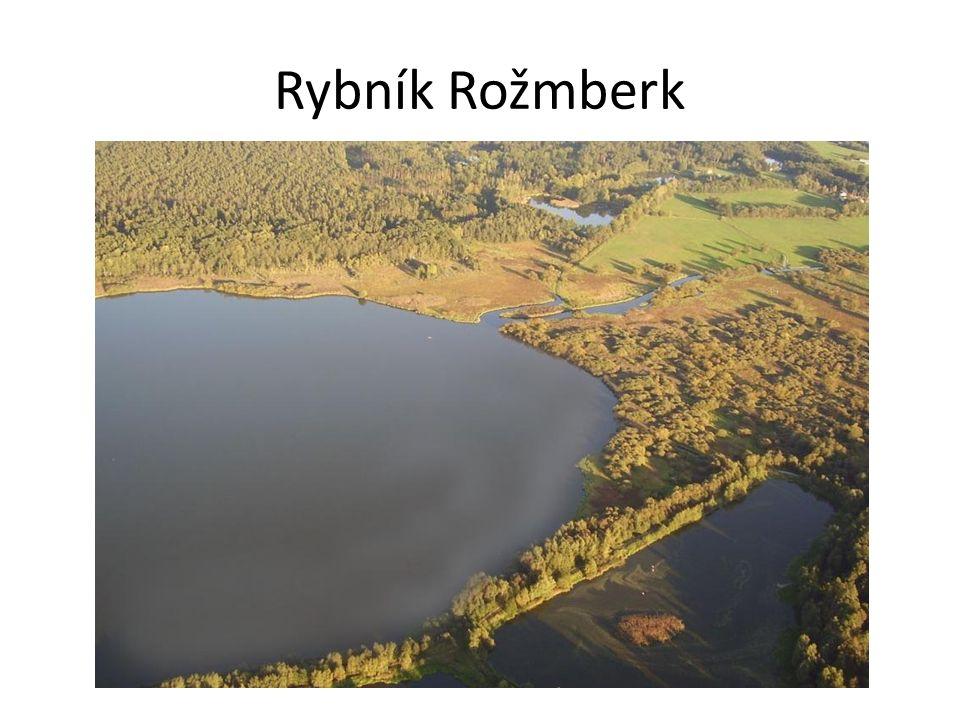 Rybník Máchovo jezero