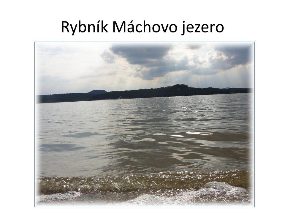 Řešení Podtrhni v textu české rybníky a přehradní nádrže: Jezera nepodtrhávej.