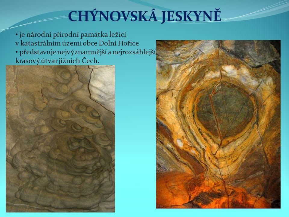 CHÝNOVSKÁ JESKYNĚ je národní přírodní památka ležící v katastrálním území obce Dolní Hořice představuje nejvýznamnější a nejrozsáhlejší krasový útvar jižních Čech.