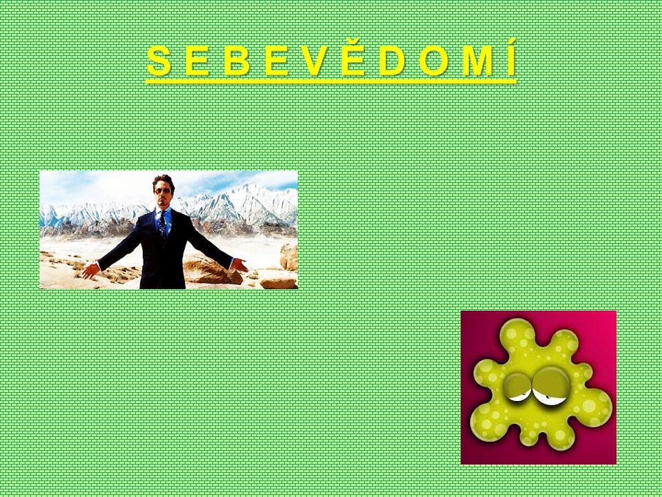 S E B E V Ě D O M Í