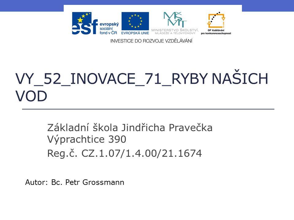 VY_52_INOVACE_71_RYBY NAŠICH VOD Základní škola Jindřicha Pravečka Výprachtice 390 Reg.č.