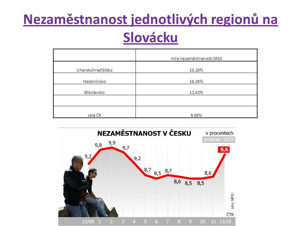 Nezaměstnanost jednotlivých regionů na Slovácku míra nezaměstnanosti 2010 Uherskohraďišťsko10,20% Hodonínsko16,30% Břeclavsko12,62% celá ČR9,60%