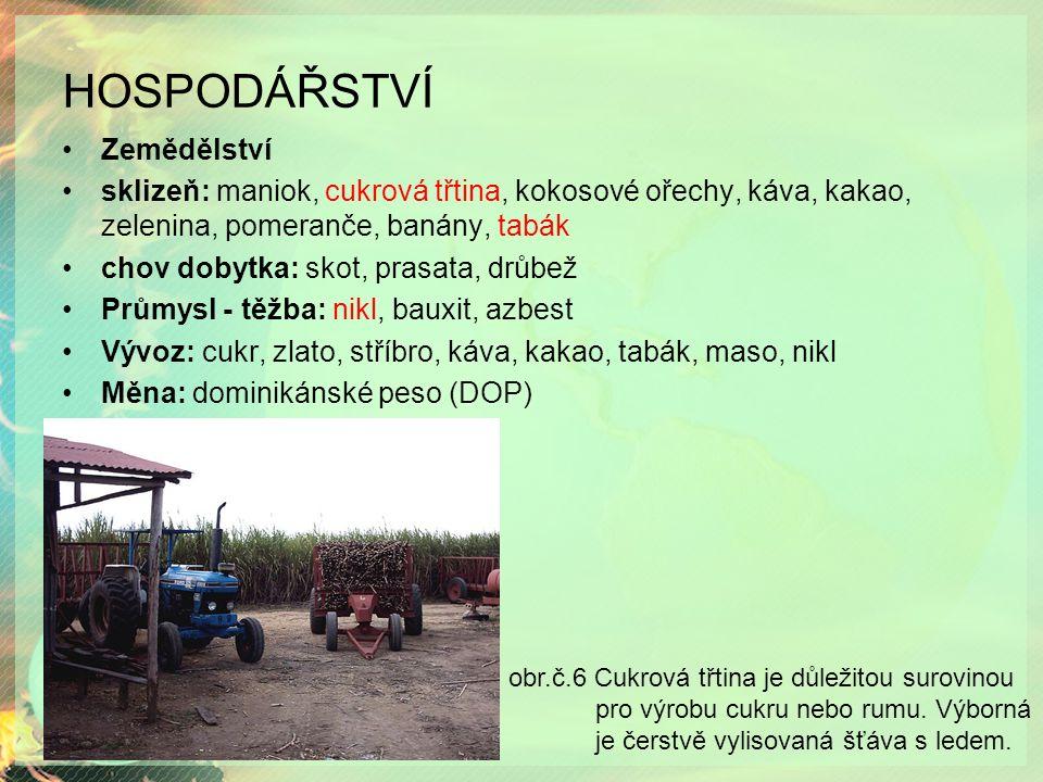 HOSPODÁŘSTVÍ Zemědělství sklizeň: maniok, cukrová třtina, kokosové ořechy, káva, kakao, zelenina, pomeranče, banány, tabák chov dobytka: skot, prasata