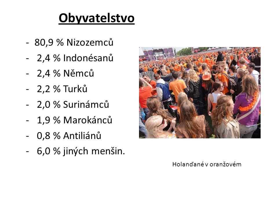 Obyvatelstvo -80,9 % Nizozemců - 2,4 % Indonésanů - 2,4 % Němců - 2,2 % Turků - 2,0 % Surinámců - 1,9 % Marokánců - 0,8 % Antiliánů - 6,0 % jiných men