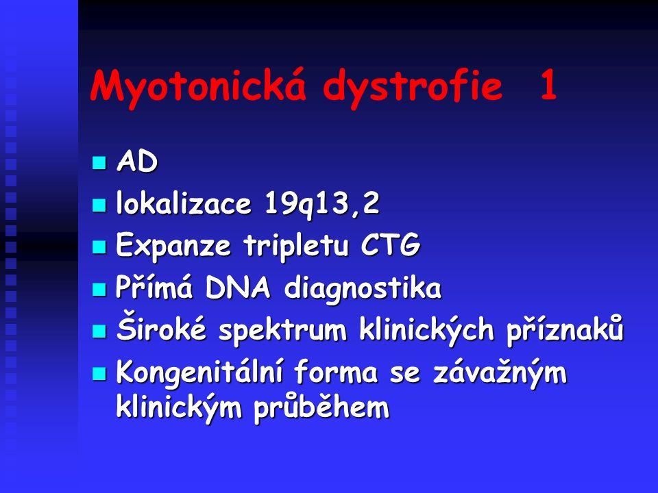 Myotonická dystrofie 1 AD AD lokalizace 19q13,2 lokalizace 19q13,2 Expanze tripletu CTG Expanze tripletu CTG Přímá DNA diagnostika Přímá DNA diagnostika Široké spektrum klinických příznaků Široké spektrum klinických příznaků Kongenitální forma se závažným klinickým průběhem Kongenitální forma se závažným klinickým průběhem