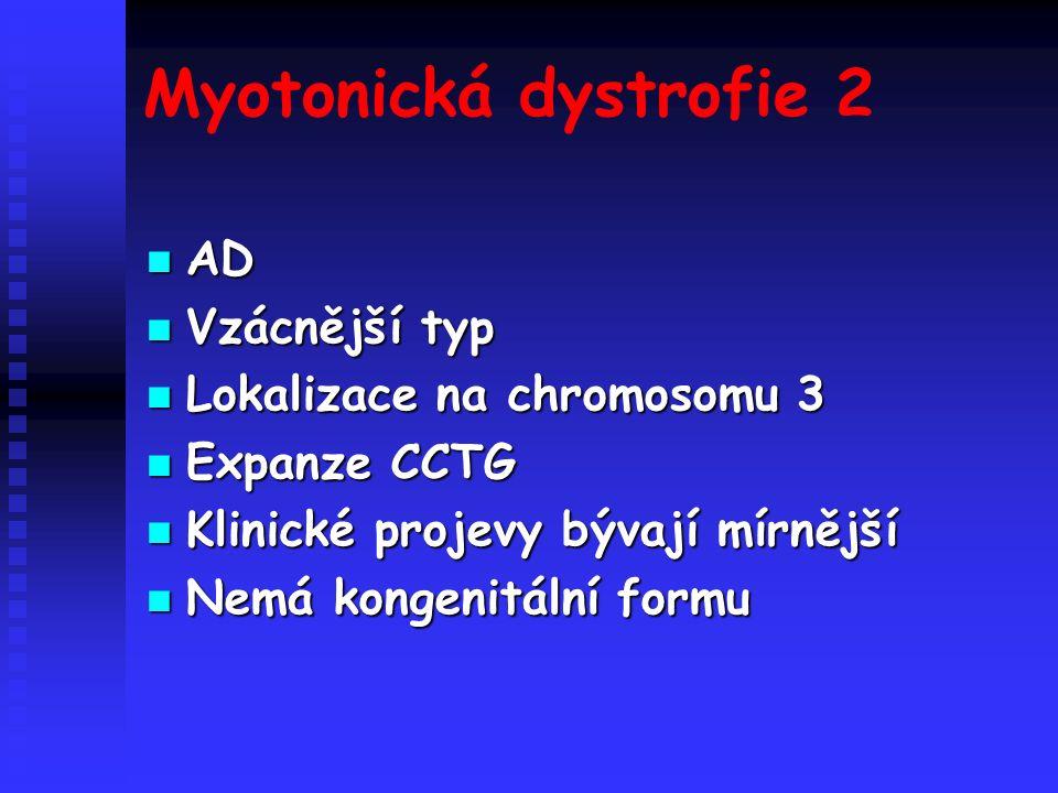 Myotonická dystrofie 2 AD AD Vzácnější typ Vzácnější typ Lokalizace na chromosomu 3 Lokalizace na chromosomu 3 Expanze CCTG Expanze CCTG Klinické projevy bývají mírnější Klinické projevy bývají mírnější Nemá kongenitální formu Nemá kongenitální formu