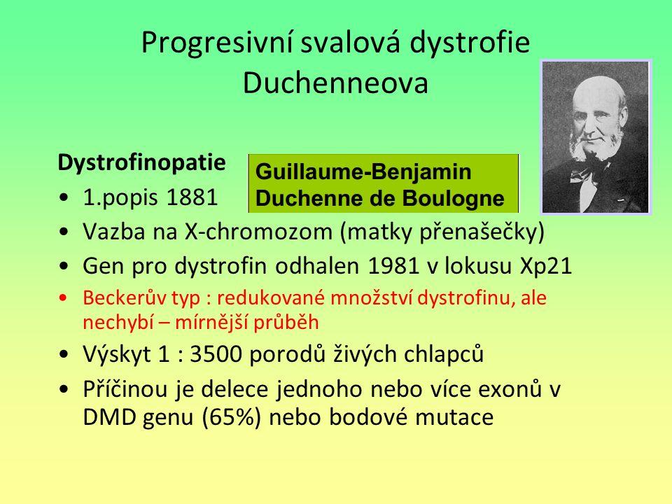Progresivní svalová dystrofie Duchenneova Dystrofinopatie 1.popis 1881 Vazba na X-chromozom (matky přenašečky) Gen pro dystrofin odhalen 1981 v lokusu