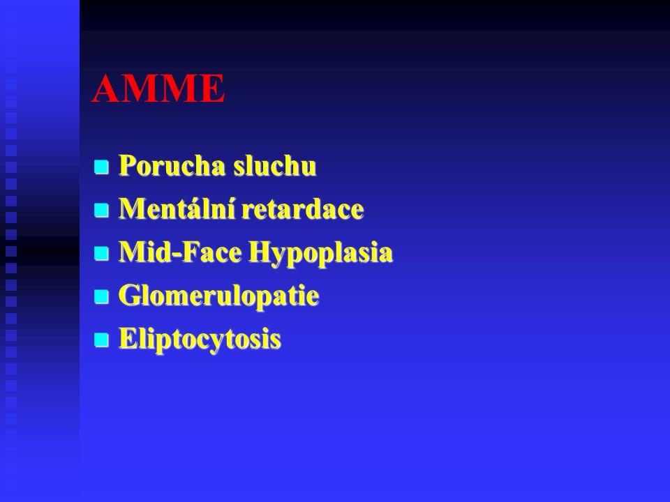 AMME Porucha sluchu Porucha sluchu Mentální retardace Mentální retardace Mid-Face Hypoplasia Mid-Face Hypoplasia Glomerulopatie Glomerulopatie Eliptocytosis Eliptocytosis
