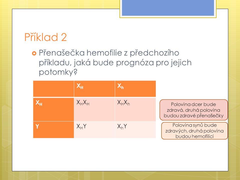 Příklad 2  Přenašečka hemofilie z předchozího příkladu, jaká bude prognóza pro jejich potomky.