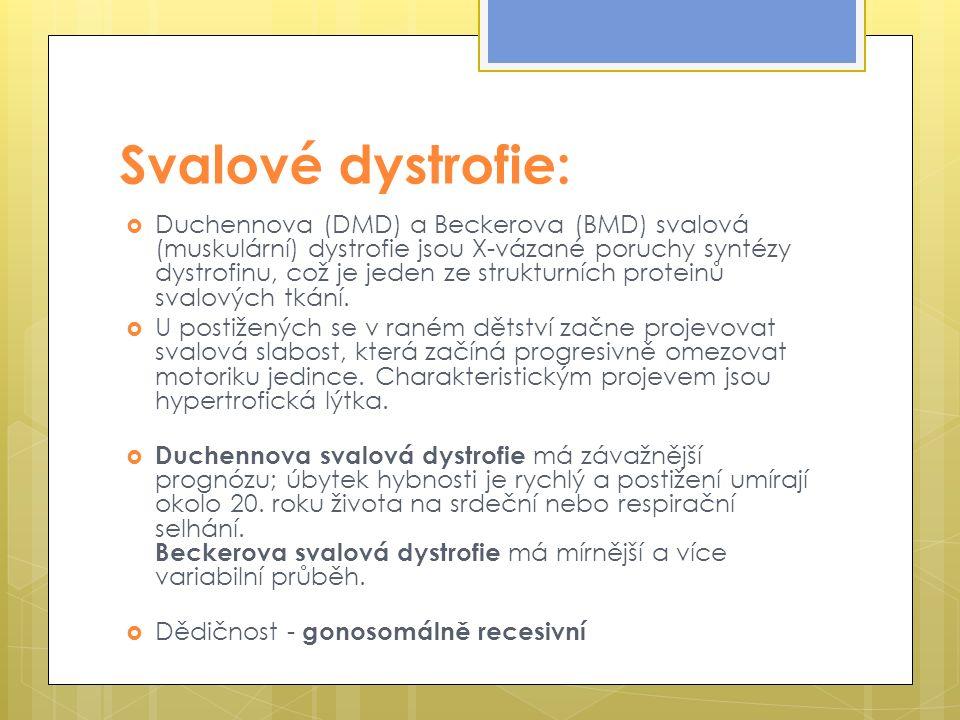 Svalové dystrofie:  Duchennova (DMD) a Beckerova (BMD) svalová (muskulární) dystrofie jsou X-vázané poruchy syntézy dystrofinu, což je jeden ze strukturních proteinů svalových tkání.