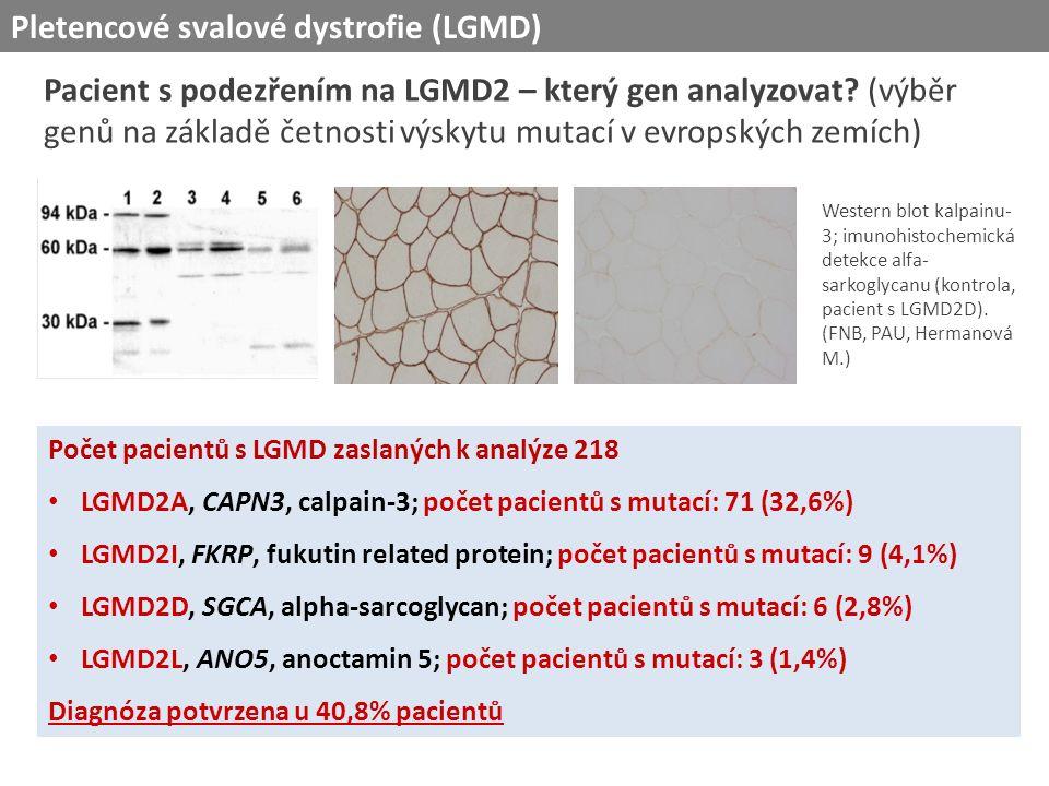 Počet pacientů s LGMD zaslaných k analýze 218 LGMD2A, CAPN3, calpain-3; počet pacientů s mutací: 71 (32,6%) LGMD2I, FKRP, fukutin related protein; počet pacientů s mutací: 9 (4,1%) LGMD2D, SGCA, alpha-sarcoglycan; počet pacientů s mutací: 6 (2,8%) LGMD2L, ANO5, anoctamin 5; počet pacientů s mutací: 3 (1,4%) Diagnóza potvrzena u 40,8% pacientů Western blot kalpainu- 3; imunohistochemická detekce alfa- sarkoglycanu (kontrola, pacient s LGMD2D).