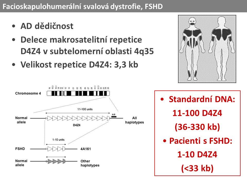 AD dědičnost Delece makrosatelitní repetice D4Z4 v subtelomerní oblasti 4q35 Velikost repetice D4Z4: 3,3 kb Facioskapulohumerální svalová dystrofie, FSHD Standardní DNA: 11-100 D4Z4 (36-330 kb) Pacienti s FSHD: 1-10 D4Z4 (<33 kb)