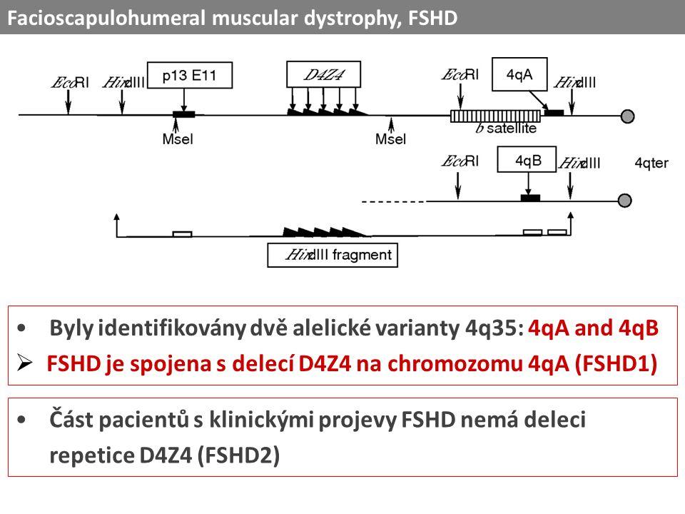 Byly identifikovány dvě alelické varianty 4q35: 4qA and 4qB  FSHD je spojena s delecí D4Z4 na chromozomu 4qA (FSHD1) Část pacientů s klinickými projevy FSHD nemá deleci repetice D4Z4 (FSHD2) Facioscapulohumeral muscular dystrophy, FSHD