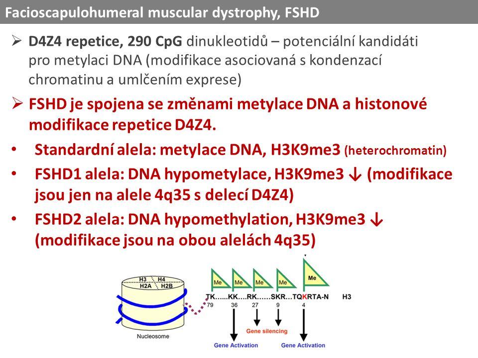  D4Z4 repetice, 290 CpG dinukleotidů – potenciální kandidáti pro metylaci DNA (modifikace asociovaná s kondenzací chromatinu a umlčením exprese) Facioscapulohumeral muscular dystrophy, FSHD  FSHD je spojena se změnami metylace DNA a histonové modifikace repetice D4Z4.