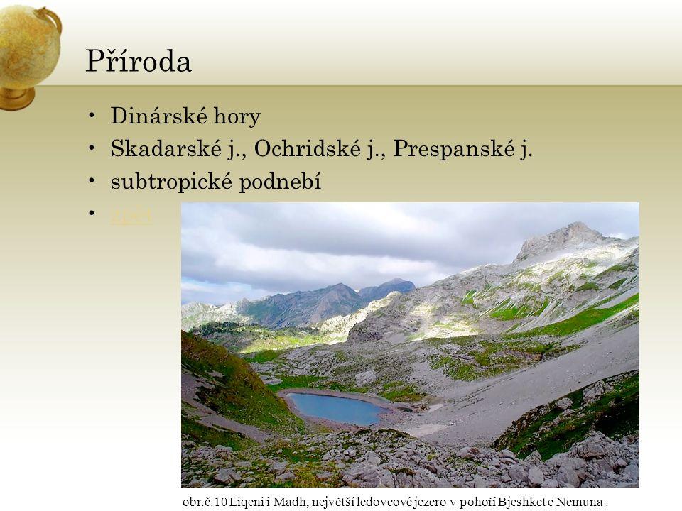 Příroda Dinárské hory Skadarské j., Ochridské j., Prespanské j.