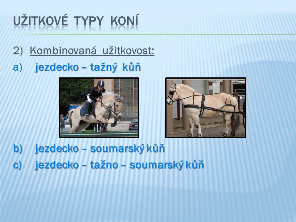 2)Kombinovaná užitkovost: jezdecko – tažný kůň a) jezdecko – tažný kůň b) jezdecko – soumarský kůň c) jezdecko – tažno – soumarský kůň
