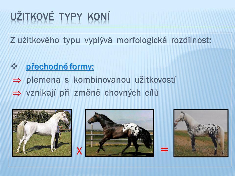Z užitkového typu vyplývá morfologická rozdílnost: přechodné formy:  přechodné formy:  plemena s kombinovanou užitkovostí  vznikají při změně chovn