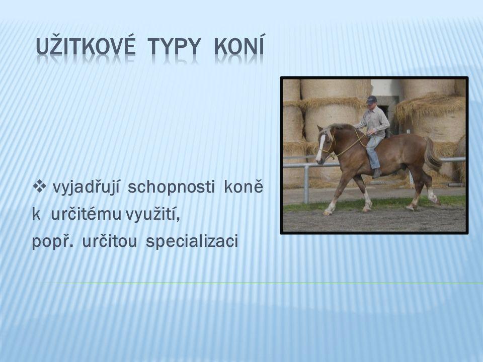  vyjadřují schopnosti koně k určitému využití, popř. určitou specializaci