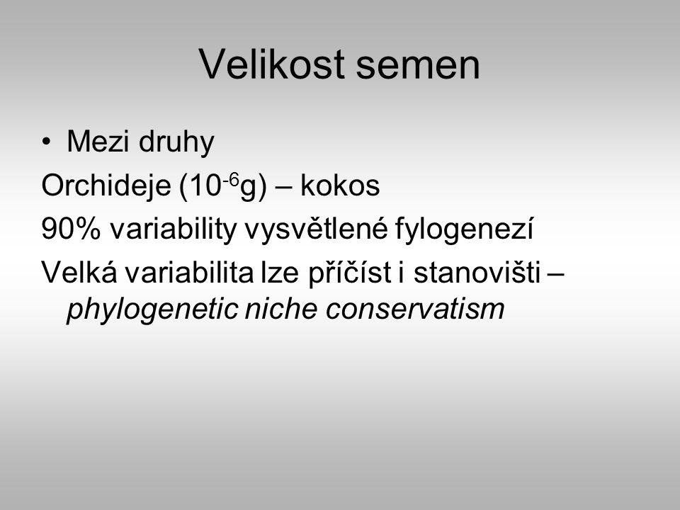 Velikost semen Mezi druhy Orchideje (10 -6 g) – kokos 90% variability vysvětlené fylogenezí Velká variabilita lze příčíst i stanovišti – phylogenetic niche conservatism