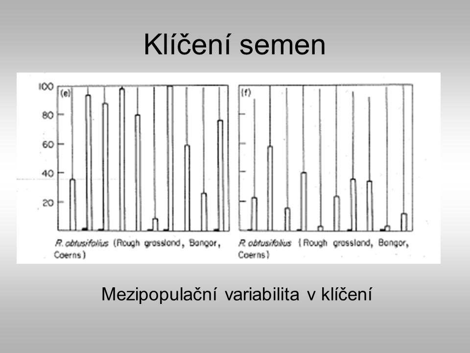 Klíčení semen Mezipopulační variabilita v klíčení