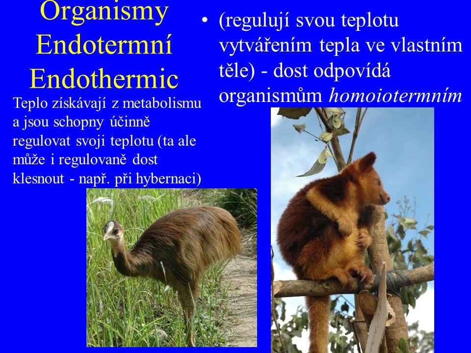 Organismy Endotermní Endothermic (regulují svou teplotu vytvářením tepla ve vlastním těle) - dost odpovídá organismům homoiotermním Teplo získávají z metabolismu a jsou schopny účinně regulovat svoji teplotu (ta ale může i regulovaně dost klesnout - např.