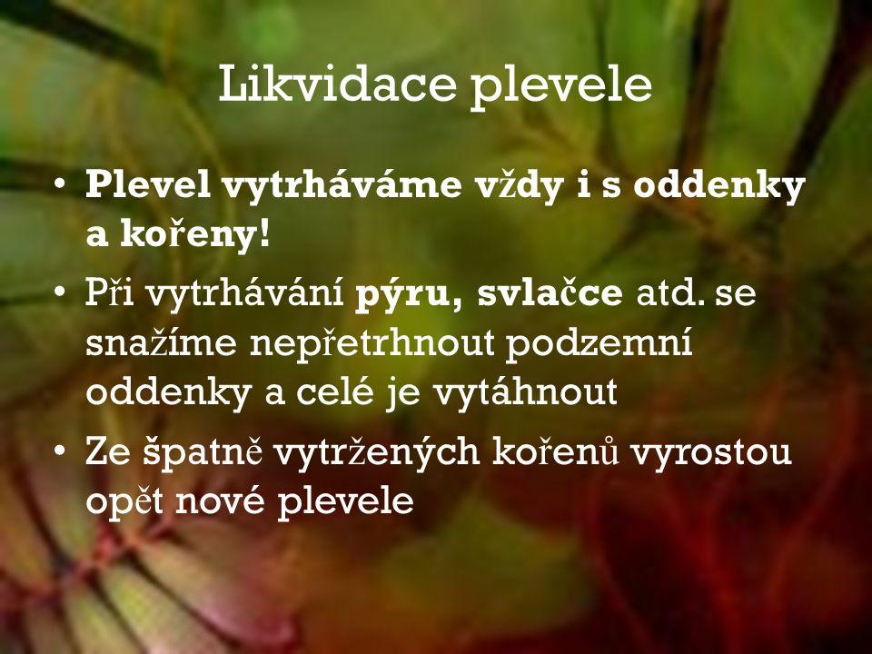 Likvidace plevele Plevel vytrháváme v ž dy i s oddenky a ko ř eny.