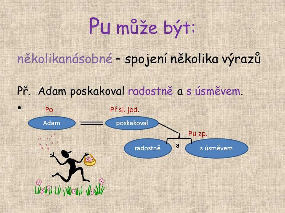 Pu může být: několikanásobné – spojení několika výrazů Př.