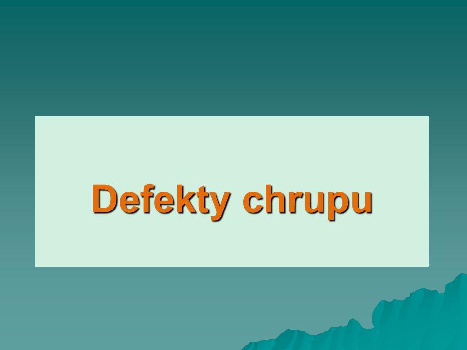 Defekty chrupu