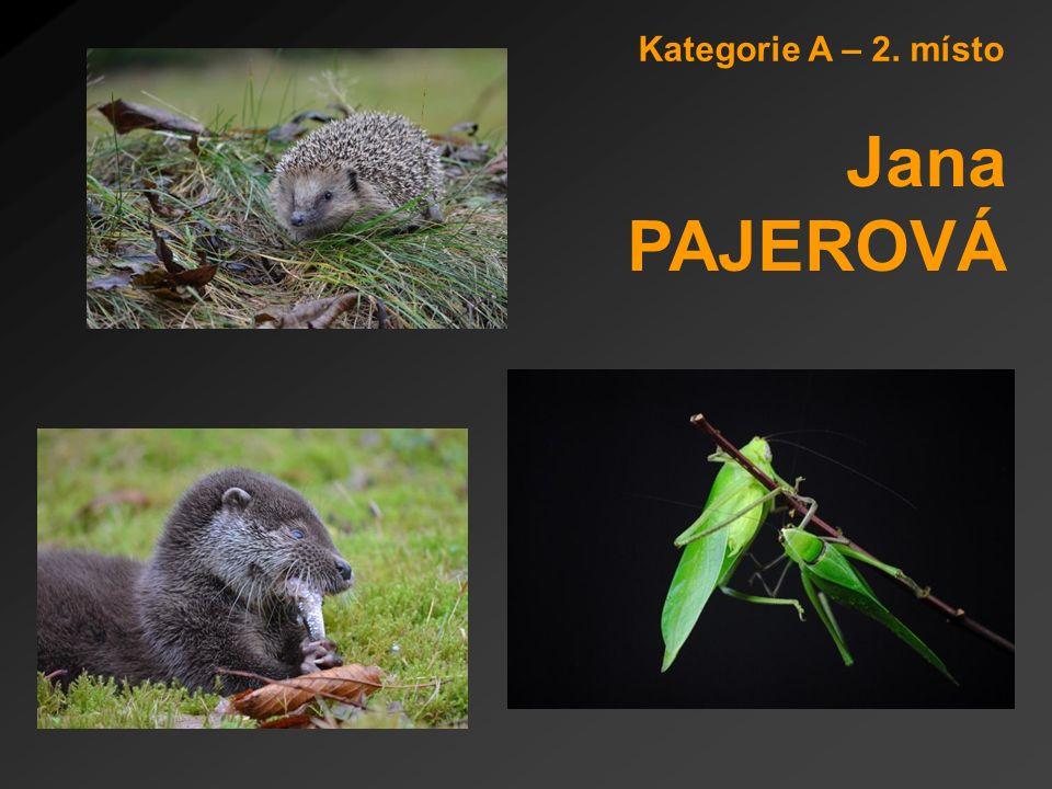 Kategorie A – 2. místo Jana PAJEROVÁ