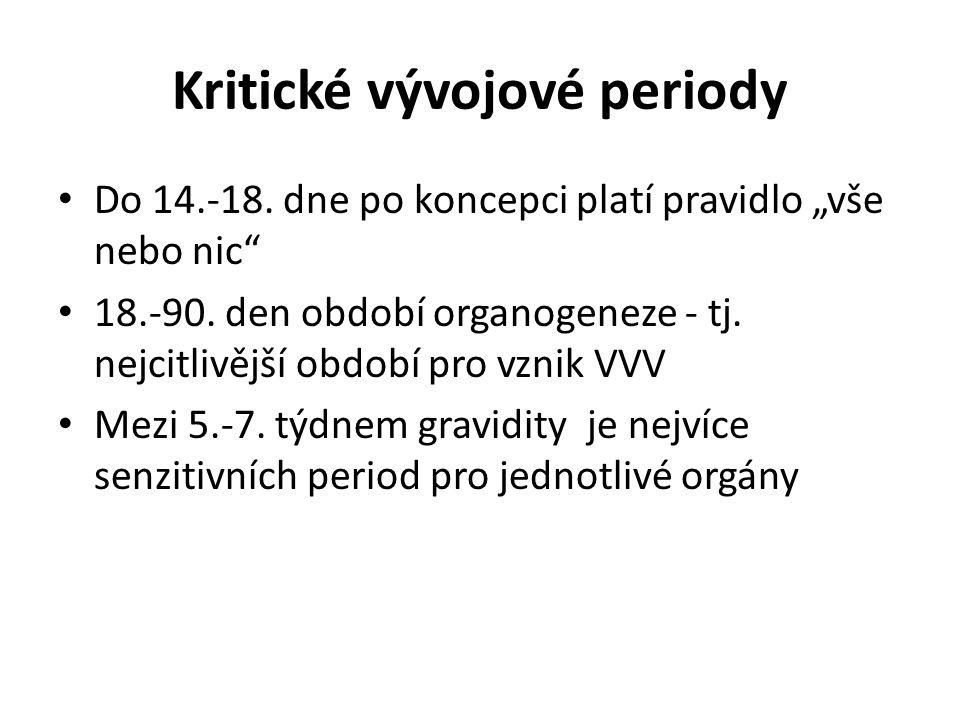 Jednotlivá kritická období 3.-6.týden - CNS, srdce 4.-7.