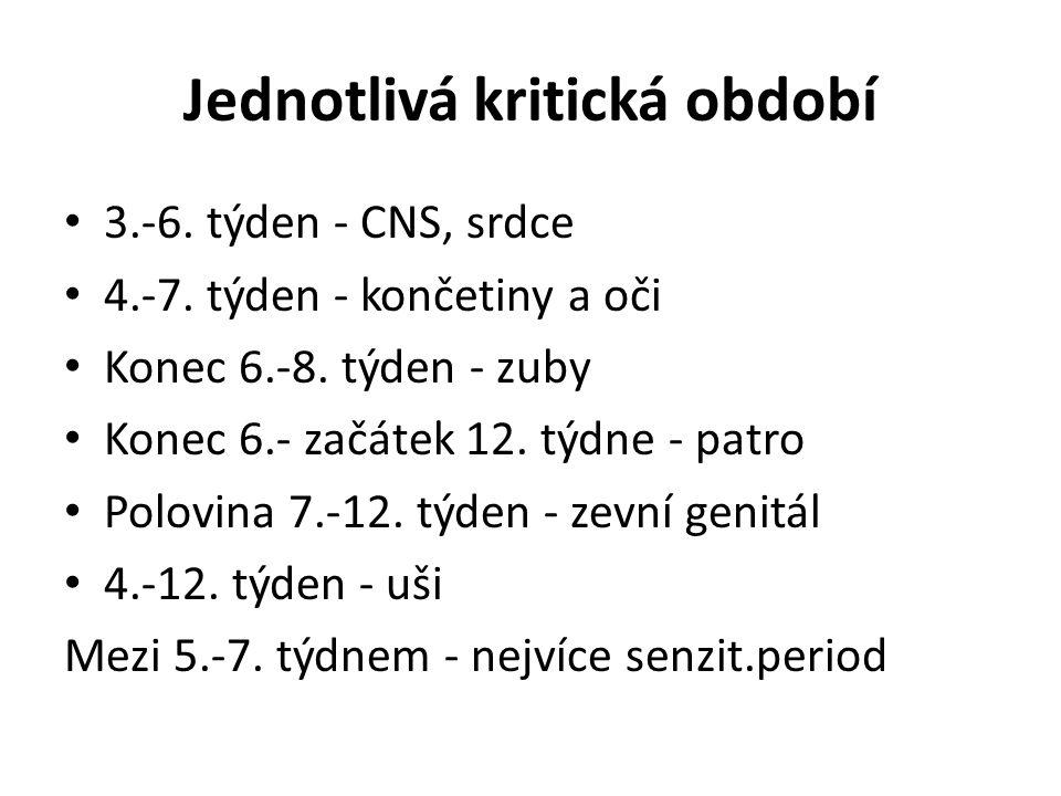 Jednotlivá kritická období 3.-6. týden - CNS, srdce 4.-7.