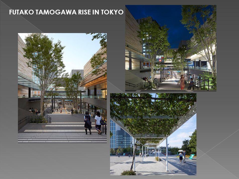 FUTAKO TAMOGAWA RISE IN TOKYO