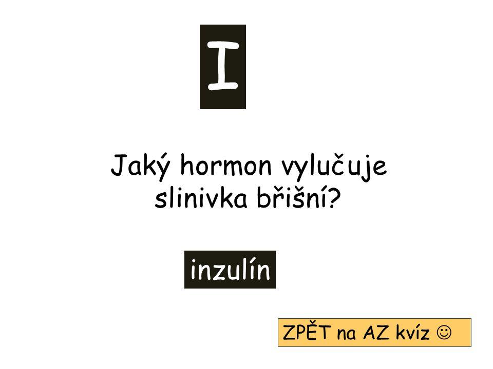 I inzulín ZPĚT na AZ kvíz Jaký hormon vylučuje slinivka břišní?