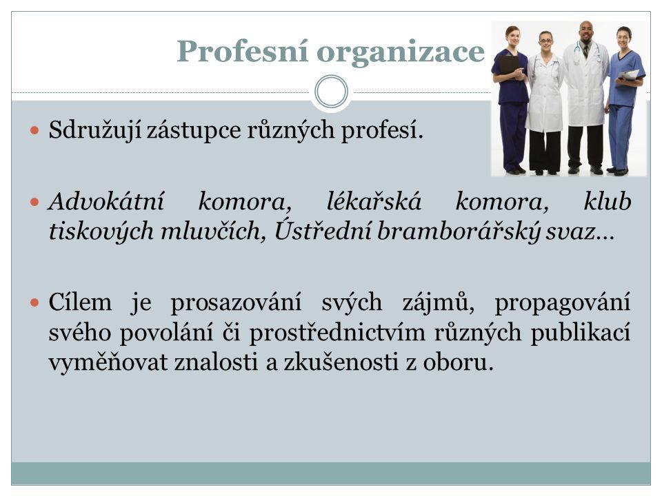Profesní organizace Sdružují zástupce různých profesí. Advokátní komora, lékařská komora, klub tiskových mluvčích, Ústřední bramborářský svaz… Cílem j