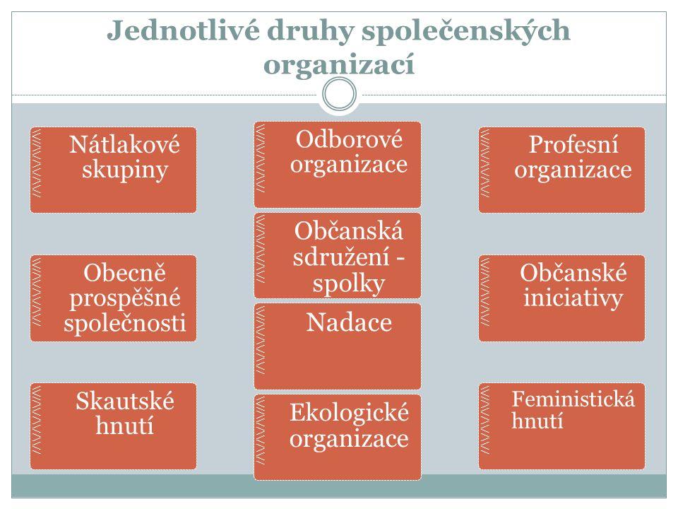 Jednotlivé druhy společenských organizací //\\//\\//\\///\\ Nátlakové skupiny //\\//\\//\\///\\ Odborové organizace //\\//\\//\\///\\ Profesní organiz