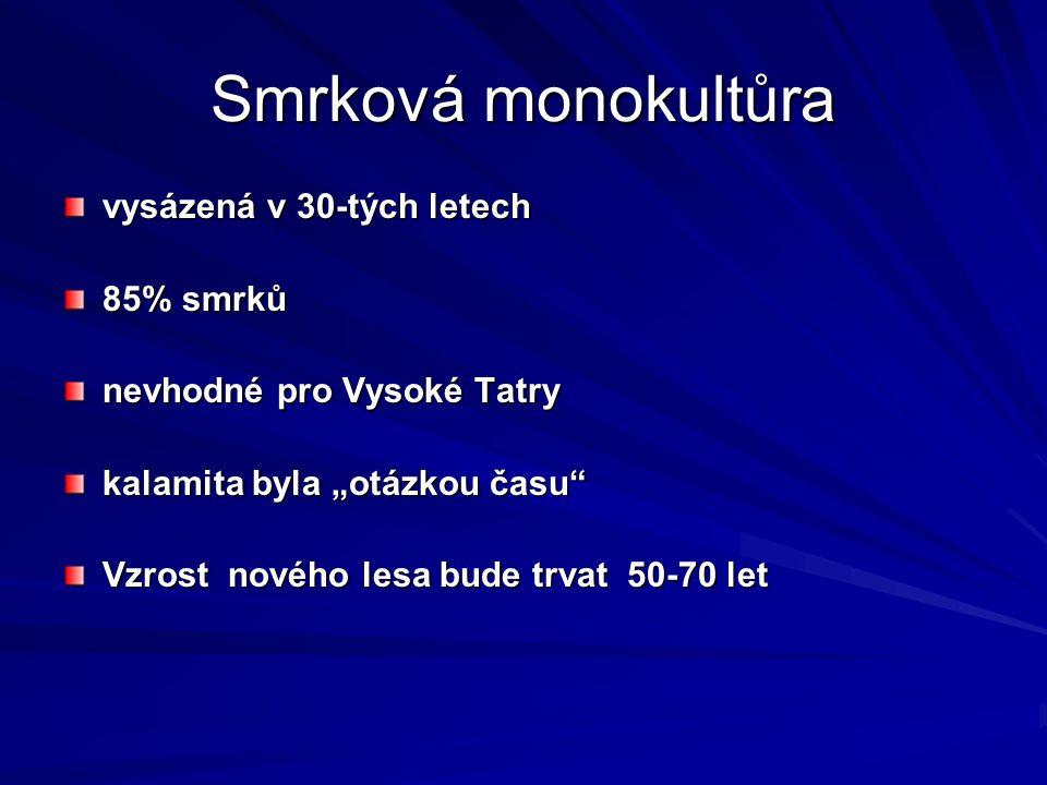"""Smrková monokultůra vysázená v 30-tých letech 85% smrků nevhodné pro Vysoké Tatry kalamita byla """"otázkou času"""" Vzrost nového lesa bude trvat 50-70 let"""