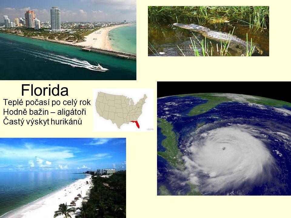Florida Teplé počasí po celý rok Hodně bažin – aligátoři Častý výskyt hurikánů