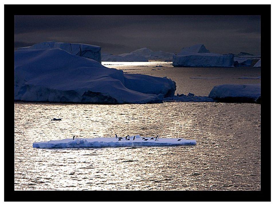 Přibližně 90 % Antakrtidy je pokryto ledem, o průměrné tloušťce 2 500 metrů, který dosahuje na některých místech až 4 776 m.