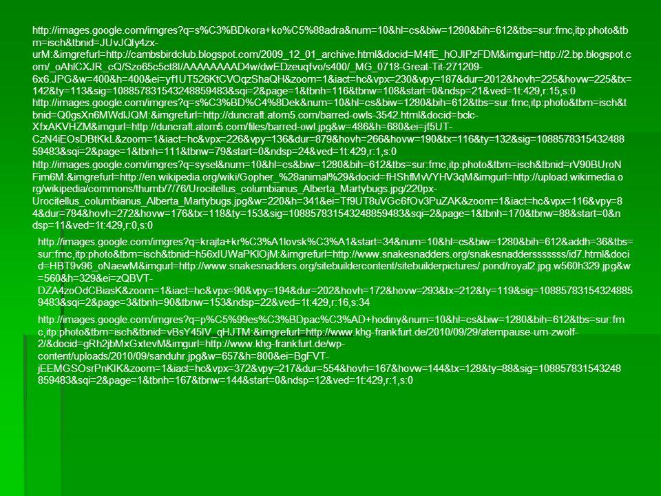 http://images.google.com/imgres q=s%C3%BDkora+ko%C5%88adra&num=10&hl=cs&biw=1280&bih=612&tbs=sur:fmc,itp:photo&tb m=isch&tbnid=JUvJQIy4zx- urM:&imgrefurl=http://cambsbirdclub.blogspot.com/2009_12_01_archive.html&docid=M4fE_hOJIPzFDM&imgurl=http://2.bp.blogspot.c om/_oAhlCXJR_cQ/Szo65c5ct8I/AAAAAAAAD4w/dwEDzeuqfvo/s400/_MG_0718-Great-Tit-271209- 6x6.JPG&w=400&h=400&ei=yf1UT526KtCVOqzShaQH&zoom=1&iact=hc&vpx=230&vpy=187&dur=2012&hovh=225&hovw=225&tx= 142&ty=113&sig=108857831543248859483&sqi=2&page=1&tbnh=116&tbnw=108&start=0&ndsp=21&ved=1t:429,r:15,s:0 http://images.google.com/imgres q=s%C3%BD%C4%8Dek&num=10&hl=cs&biw=1280&bih=612&tbs=sur:fmc,itp:photo&tbm=isch&t bnid=Q0gsXn6MWdlJQM:&imgrefurl=http://duncraft.atom5.com/barred-owls-3542.html&docid=bclc- XfxAKVHZM&imgurl=http://duncraft.atom5.com/files/barred-owl.jpg&w=486&h=680&ei=jf5UT- CzN4iEOsDBtKkL&zoom=1&iact=hc&vpx=226&vpy=136&dur=879&hovh=266&hovw=190&tx=116&ty=132&sig=1088578315432488 59483&sqi=2&page=1&tbnh=111&tbnw=79&start=0&ndsp=24&ved=1t:429,r:1,s:0 http://images.google.com/imgres q=sysel&num=10&hl=cs&biw=1280&bih=612&tbs=sur:fmc,itp:photo&tbm=isch&tbnid=rV90BUroN Fim6M:&imgrefurl=http://en.wikipedia.org/wiki/Gopher_%28animal%29&docid=fHShfMvVYHV3qM&imgurl=http://upload.wikimedia.o rg/wikipedia/commons/thumb/7/76/Urocitellus_columbianus_Alberta_Martybugs.jpg/220px- Urocitellus_columbianus_Alberta_Martybugs.jpg&w=220&h=341&ei=Tf9UT8uVGc6fOv3PuZAK&zoom=1&iact=hc&vpx=116&vpy=8 4&dur=784&hovh=272&hovw=176&tx=118&ty=153&sig=108857831543248859483&sqi=2&page=1&tbnh=170&tbnw=88&start=0&n dsp=11&ved=1t:429,r:0,s:0 http://images.google.com/imgres q=krajta+kr%C3%A1lovsk%C3%A1&start=34&num=10&hl=cs&biw=1280&bih=612&addh=36&tbs= sur:fmc,itp:photo&tbm=isch&tbnid=h56xIUWaPKlOjM:&imgrefurl=http://www.snakesnadders.org/snakesnaddersssssss/id7.html&doci d=HBT9v96_oNaewM&imgurl=http://www.snakesnadders.org/sitebuildercontent/sitebuilderpictures/.pond/royal2.jpg.w560h329.jpg&w =560&h=329&ei=zQBVT- DZA4zoOdCBiasK&zoom=1&iact=h