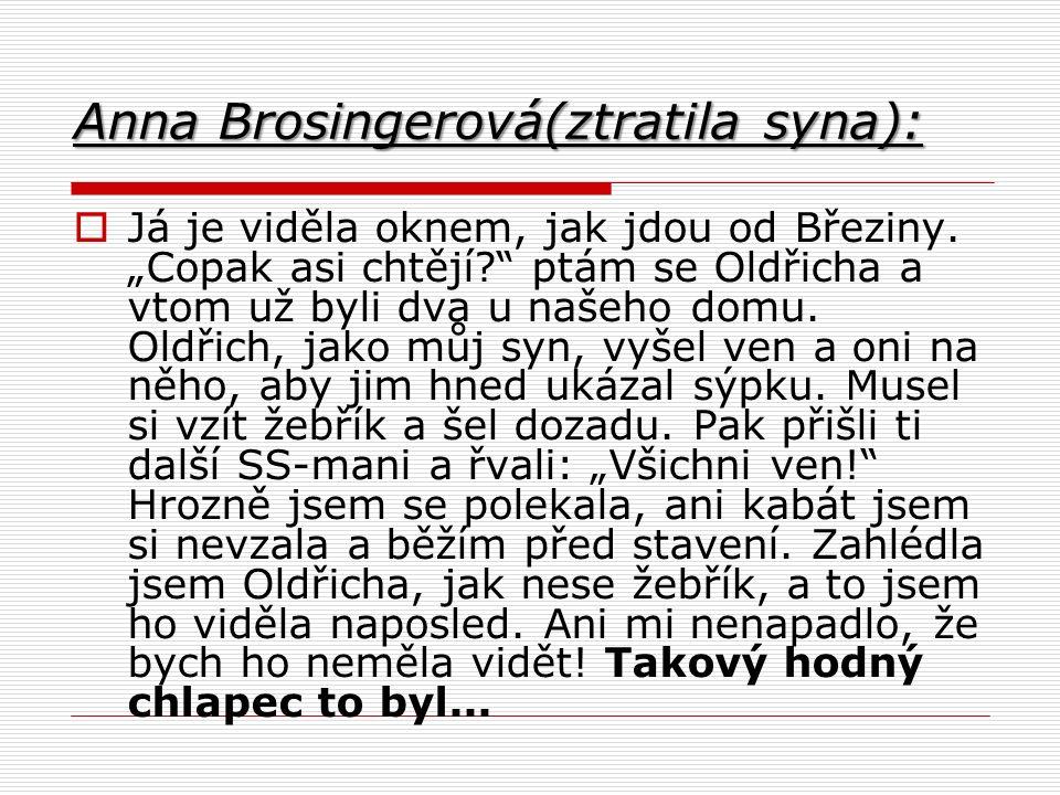 Anna Brosingerová(ztratila syna):  Já je viděla oknem, jak jdou od Březiny.
